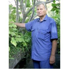 №8 від 05.03.2010 | Наші рослини лікують не тільки людей, а й Землю!