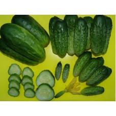 №20 від 21.05.2010 | Носівські високоврожайні сорти огірків